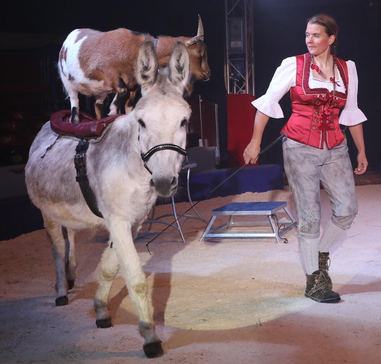 Circus Harlekin2